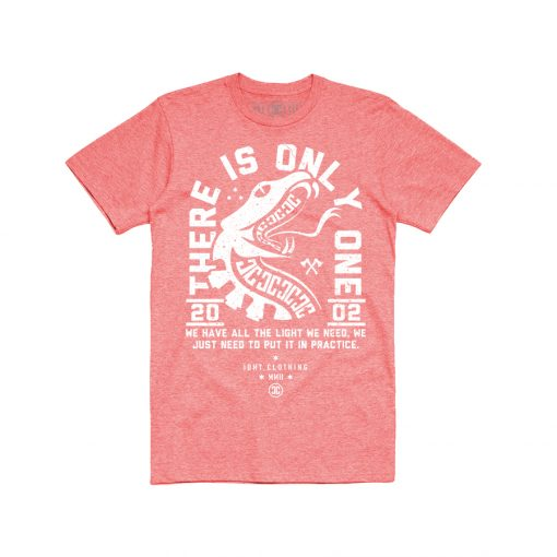 IDNT-clothing-tees-red-skateboarding